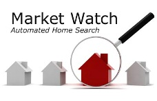 Email Alerts with Market Watch