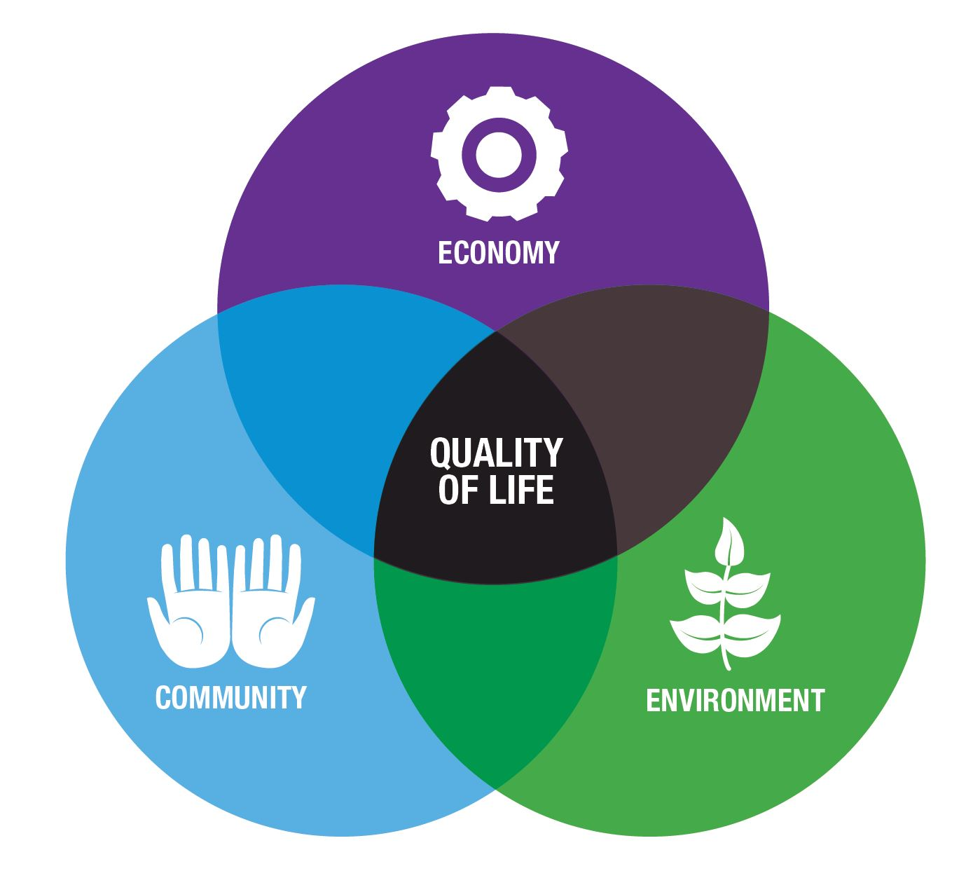 Quality of Life Circle