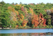 Fall in Arrowsic, Maine