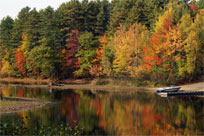 Fall in Sebago Lake, Maine